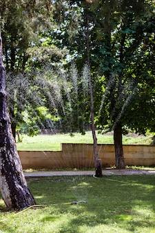 Садовый спринклер в солнечный летний день