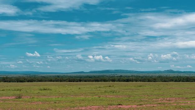 Африканская панорама в национальном парке серенгети