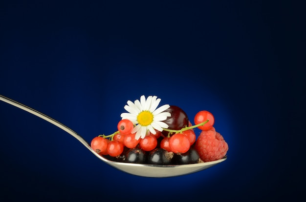 赤スグリ、チェリー、ラズベリー、黒スグリ、シャドベリーのジューシーな野生の果実でいっぱいの大きなスプーン、緑の葉と青のカモミールの花。新鮮さと夏のひとときを。