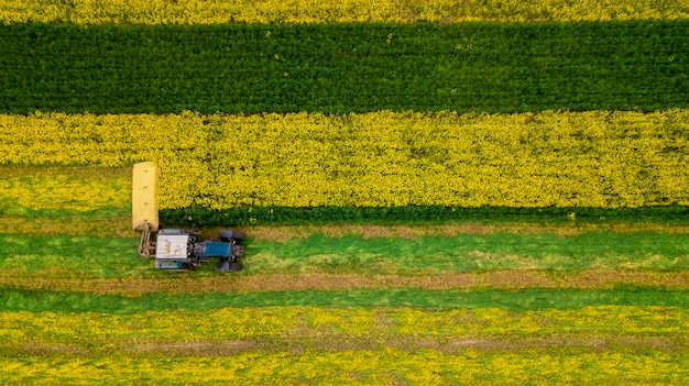 回転式芝刈り機付きのトラクターを使用して草を刈る農家。