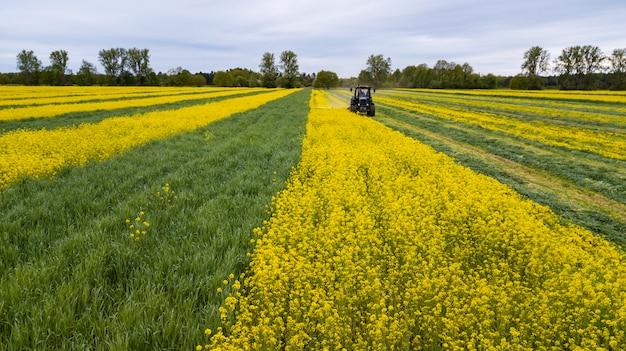 畑のトラクター、春の農業