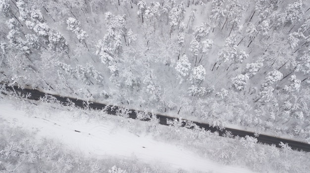 冬の森、通り過ぎるトラック、モーションブラーの雪に覆われた道路の空撮