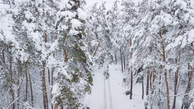 冬の森。上からの眺め。写真はドローンで撮影されました。雪の中で松とモミの森。