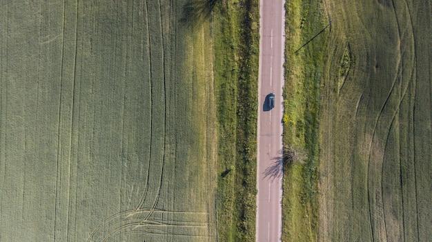 Вид с воздуха на извилистой дороге среди леса и деревьев.