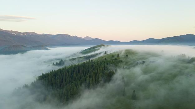 日当たりの良い山岳風景空撮。モミの森の丘の斜面表面の野生の自然の風景。厚い霧渓谷木製小屋山草原自然環境の概念