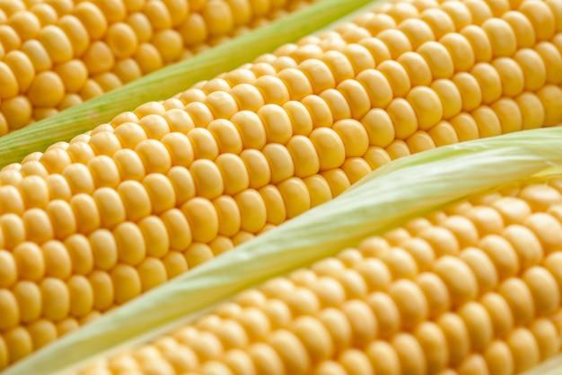 熟したトウモロコシの穂軸のクローズアップ。