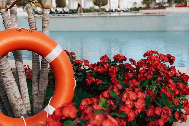 Спасательный круг, стоящий рядом с бассейном