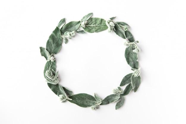 Рамка с зелеными ветками и листьями, изолированных на белом