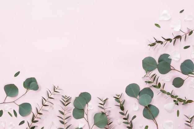 ピンクの背景、フラット横たわっていた、トップビューで花と葉のフレーム