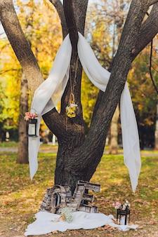 Украшенное дерево для свадебного мероприятия
