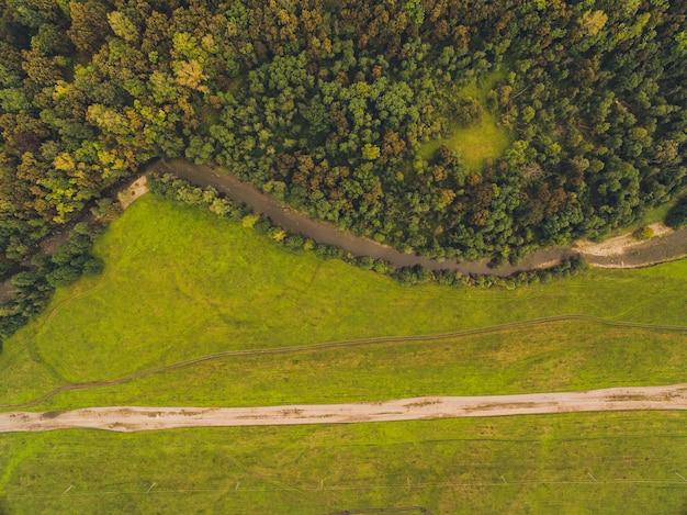 森と田舎道