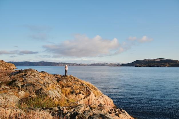 美しい夏の日の風景が放棄された芸術自然沿岸防衛