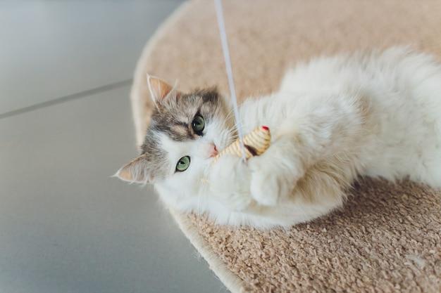 Кошка играет с мышкой из соломы, висящей на веревке.