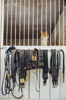 Кожаная лошадь седла в конюшне