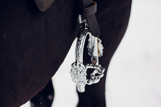 イングリッシュサドルスターラップレザーとフェンダーのクローズアップ-乗馬用サドル
