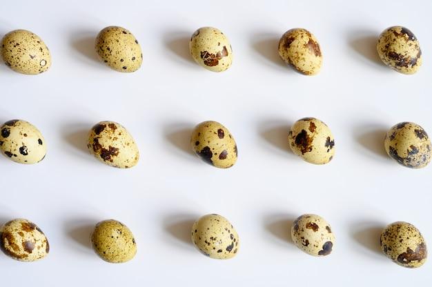 Перепелиные яйца на белом.