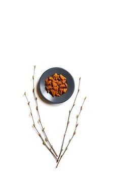 Чага гриб. композиция из мелких сухих кусочков березы грибного дерева чага в круглую тарелку и березовые веточки, изолированных на белой стене. концепция альтернативной натуральной медицины. вертикальное изображение