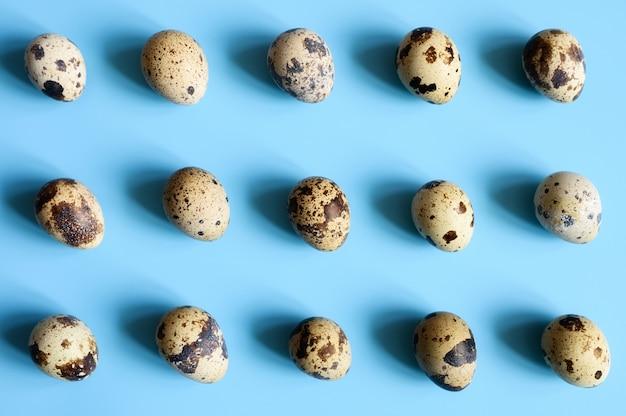 Перепелиные яйца на синем фоне. регулярный образец