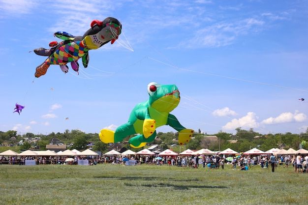 Зеленое летание змея лягушка в голубом небе. баллонное шоу. фестиваль воздушных змеев