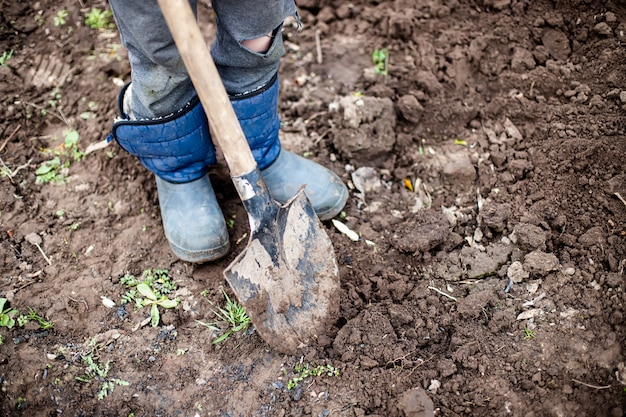 庭師は庭を掘っています。
