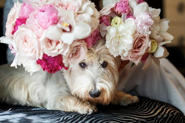 頭に花を持つふわふわした犬