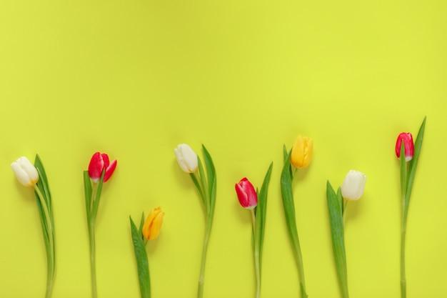 素敵なチューリップの花の組成