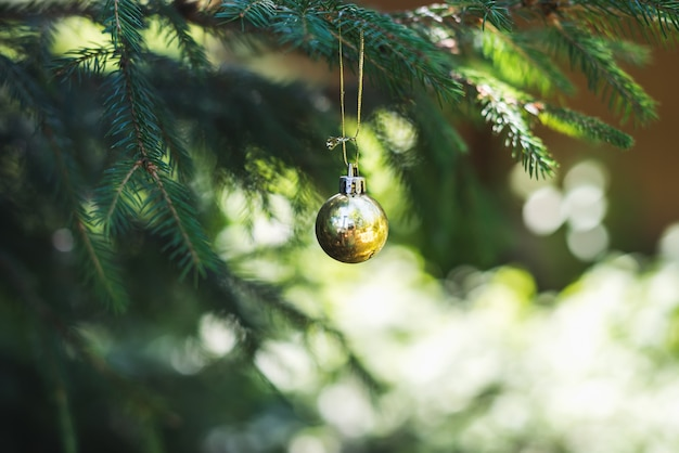 毛皮木の枝にぶら下がっているクリスマスゴールデングッズボール