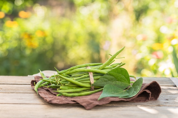 Букет из зелёных веток на зелёной природе