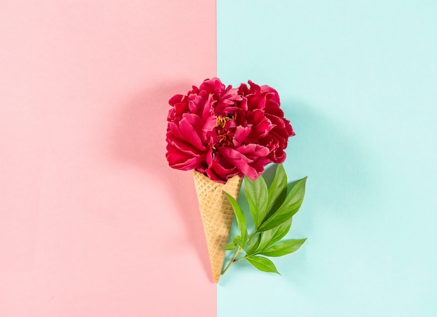 ワッフルコーンの赤い牡丹の花