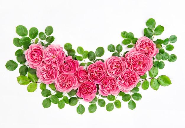 緑の葉とピンクのバラ
