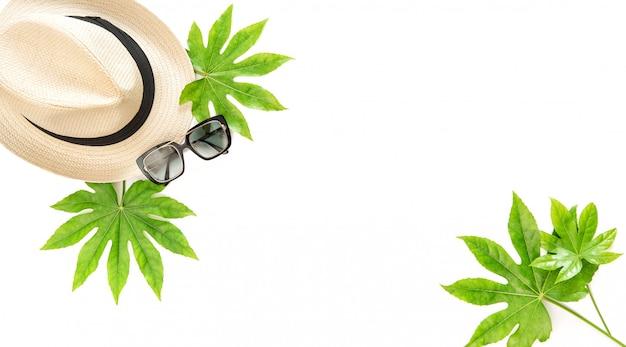 夏の帽子と緑の葉とメガネ