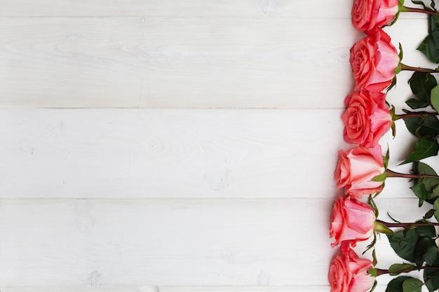 白い木製の背景にピンクのバラ