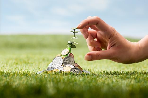 Монеты на траве