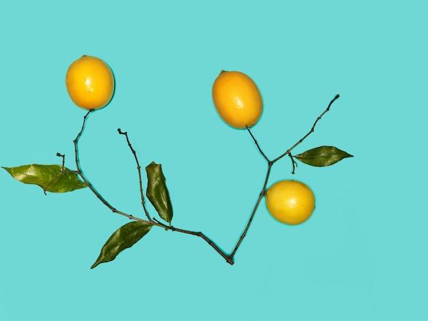 青色の背景に新鮮なレモン
