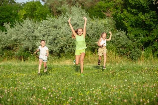 Дети, дети бегают по лугу в солнечном свете лета.