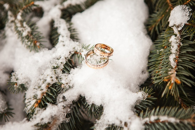 Обручальные кольца крупным планом на снегу