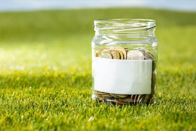緑の芝生の上のお金のためのコインのガラスの瓶で育つ植物