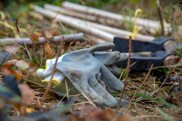 Инструменты для посадки новых деревьев в лесу для реконструкции после стихийных бедствий