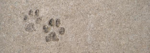 コンクリート上の犬の足の跡