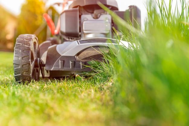 家族の家の隣の芝生を刈るモーター芝刈り機