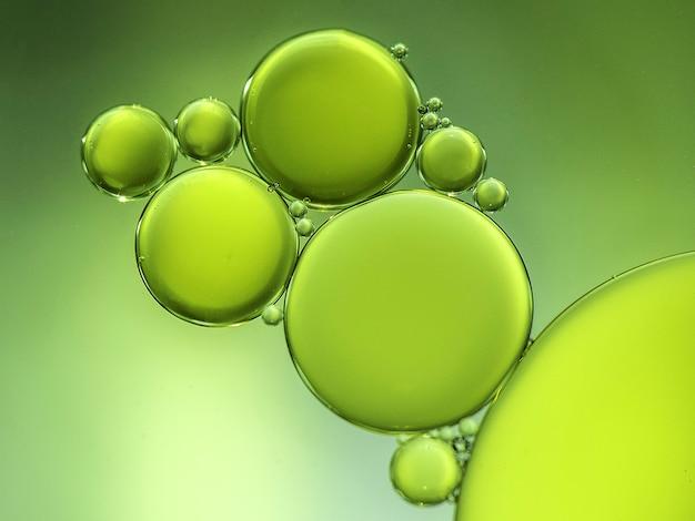 Зеленые круги