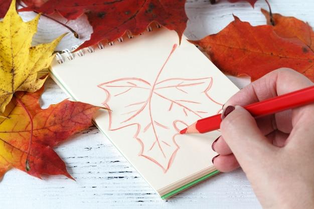 手描きのペンとカエデの葉に囲まれたスケッチブック