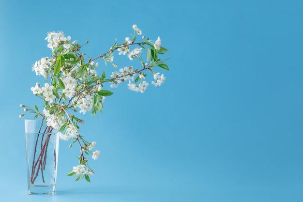 Весенние цветы - вишня ветка в стекле. открытка с весенними цветами