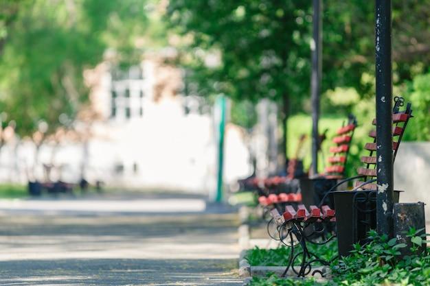 都市公園のベンチ