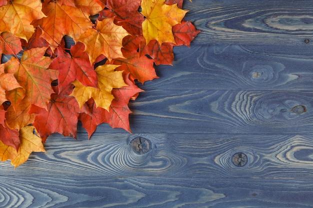 Осень фон рамка с кленовыми листьями на синем