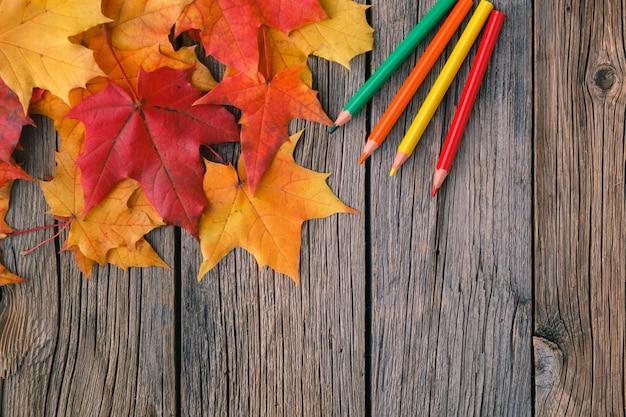 鉛筆とカエデの葉の秋の創造的な芸術絵画の背景