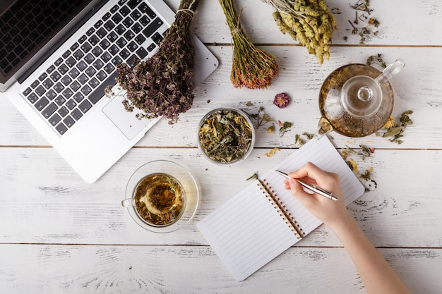 Натуральная медицина. травы, лекарственные бутылки и старая книга рецептов с копией пространства для вашего текста