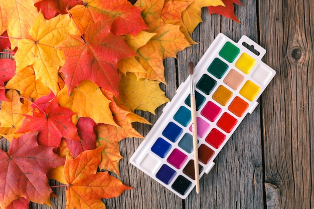 秋のカエデの葉と創造的なアートサーフェス