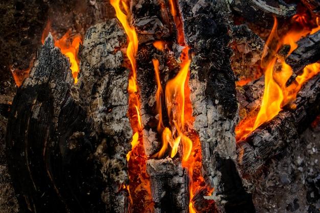 暖炉グリルで火します。