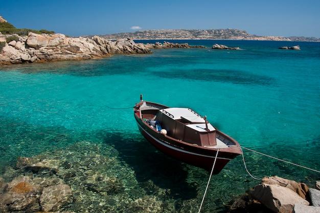 スパージの素晴らしい海水